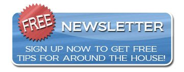 New York Plastering Newsletter